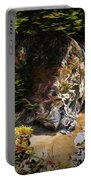 Mcway Falls Painting Portable Battery Charger