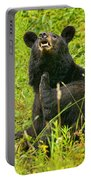 Meadow Itch Bear Portable Battery Charger