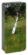 Meadow With Birch Trees Portable Battery Charger