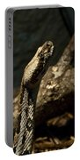 Mean Poisonous Snake Portable Battery Charger