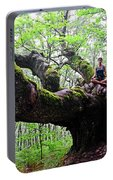 Meditation On Centenary Tree  Portable Battery Charger