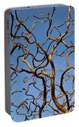 Medusa Limbs Reaching For The Sky Portable Battery Charger
