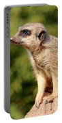Meerkat 1 Portable Battery Charger