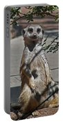 Meerkat 2 Portable Battery Charger