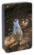 Meerkat Poising Portable Battery Charger