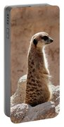 Meerkat Standing On Rock And Watching Portable Battery Charger