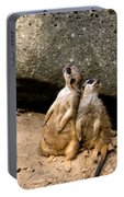 Meerkats Keeping An Eye Out Part 2 Portable Battery Charger