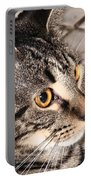 Melvin The Wondercat Portable Battery Charger