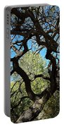 Mesquite Window Portable Battery Charger