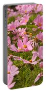 Mexican Aster Flowers 1 Portable Battery Charger