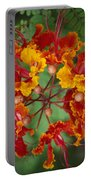 Mexican Bird Of Paradise Portable Battery Charger