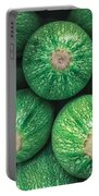 Mexican Gray Squash Portable Battery Charger