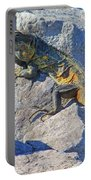 Mexican Iguana Portable Battery Charger