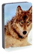 Mexican Wolf Painting Portable Battery Charger