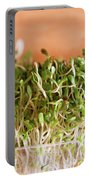 Micro Green Portable Battery Charger