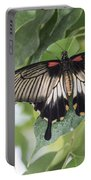 Midland Moth Portable Battery Charger