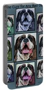 Miles Of Smiles Portable Battery Charger by DigiArt Diaries by Vicky B Fuller