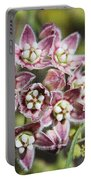 Milk Weed Vine Flowers Portable Battery Charger