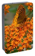 Milkweed And A Frittalary Portable Battery Charger