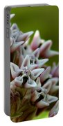 Milkweed Pink Portable Battery Charger