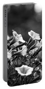 Mill Hill Inn Petunias Black And White Portable Battery Charger