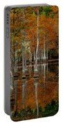 Mill Pond Reflections Portable Battery Charger