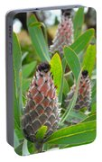 Mink Protea Flower Portable Battery Charger