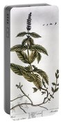 Mint Plant, 1735 Portable Battery Charger