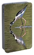 Mirror Image Stilt II Portable Battery Charger