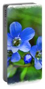 Missouri Wildflowers 5  - Polemonium Reptans -  Digital Paint 1 Portable Battery Charger