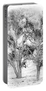 Mistletoe Tree In Black And  White Portable Battery Charger