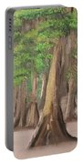 Misty Forrest Portable Battery Charger