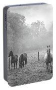 Misty Morning Horses Portable Battery Charger