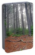 Misty Morning In An Algonquin Forest Portable Battery Charger