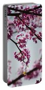 Misty Spring Morning Portable Battery Charger