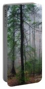 Misty Winter Forest Portable Battery Charger