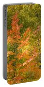 Mixed Autumn Portable Battery Charger