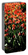 Mixed Tulips Portable Battery Charger