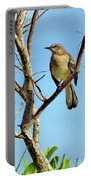Mocking Bird 1 Portable Battery Charger