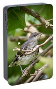 Mockingbird Youngster Portable Battery Charger