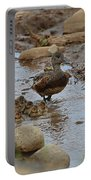 Mom Mallard And Ducklings Portable Battery Charger