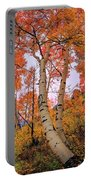 Moments Of Fall Portable Battery Charger