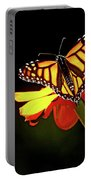 Monarch And Tithonia Light And Shadow Portable Battery Charger