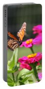 Monarch Approaching Zinnia 2 Portable Battery Charger