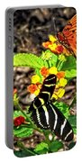 Monarch Butterfly And Zebra Butterfly Portable Battery Charger