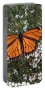 Monarch Butterfly On New Zealand Teatree Bush Portable Battery Charger