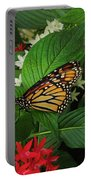 Monarch Framed Portable Battery Charger