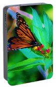 Monarch Heaven Portable Battery Charger
