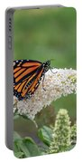 Monarch On A Butterfly Bush Portable Battery Charger