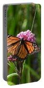 Monarch On Joe Pye Portable Battery Charger